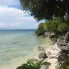 Hale Manna shore