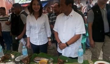 Gwen Garcia and Jejomar Binay