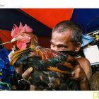 A man and his rooster in a local market in Cebu.